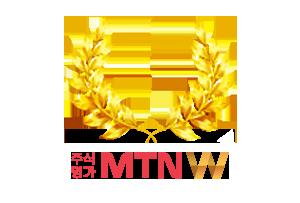 MTN�����(2)